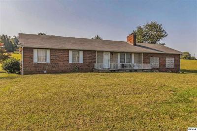 Dandridge Single Family Home For Sale: 1719 Highway 139