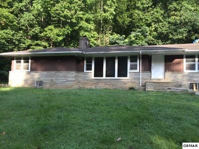 Gatlinburg Single Family Home For Sale: 1059 Banner Road