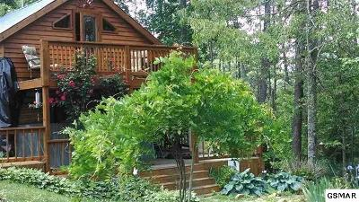 Sevierville Single Family Home For Sale: 1125 Pine Hollow