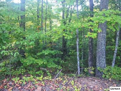 Pigeon Forge Residential Lots & Land For Sale: Lot#11 Pinemont Drive