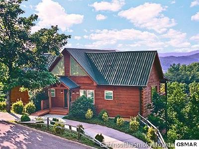 Sevierville Single Family Home For Sale: 3175 Lexy Lane