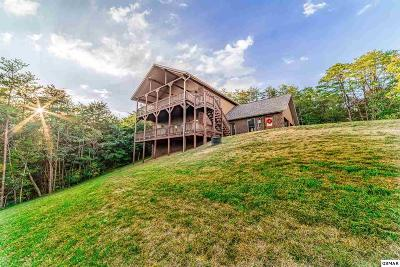 Sevierville Single Family Home For Sale: 891 Lake View Loop