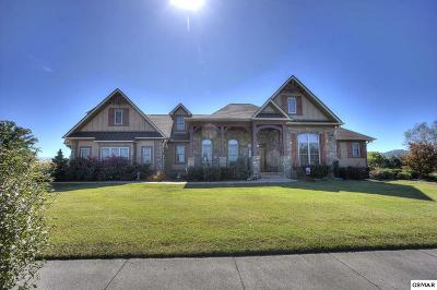 Sevierville Single Family Home For Sale: 1428 Park Place