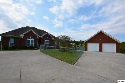 Sevierville Single Family Home For Sale: 2848 Aaron Branch Way