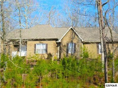 Maryville Single Family Home For Sale: 115 Goseitt Ridge Way