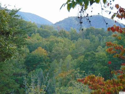 Pigeon Forge Residential Lots & Land For Sale: 494 Mill Creek Rd