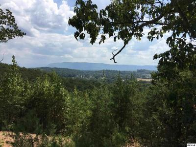 Seymour Residential Lots & Land For Sale: 596 N Cunningham Rd