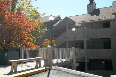 Sevier County Condo/Townhouse For Sale: 3710 Weber Rd. E-306