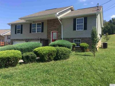Seymour Single Family Home For Sale: 312 Meadow Creek Dr