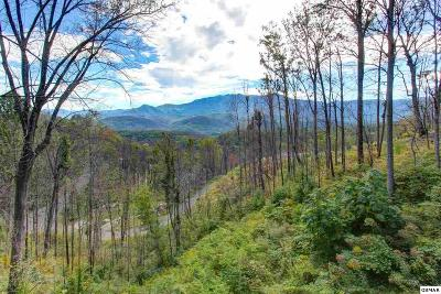 Gatlinburg Residential Lots & Land For Sale: 941 Wiley Oakley Drive