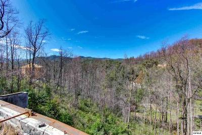 Gatlinburg Residential Lots & Land For Sale: 816 Leisure Lane