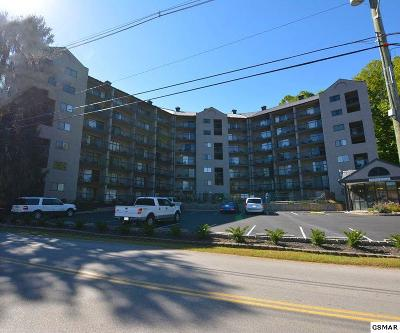 Gatlinburg Condo/Townhouse For Sale: 306 Baskins Creek Road