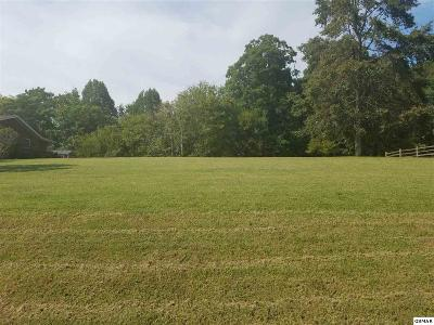 Seymour Residential Lots & Land For Sale: Lot 43 Chisum