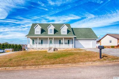 Sevierville Single Family Home For Sale: 2814 English Valley Lane