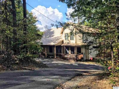 Pigeon Forge Single Family Home For Sale: 716 Monte Wood Circle