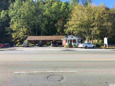 Gatlinburg Single Family Home For Sale: 1414 E Parkway