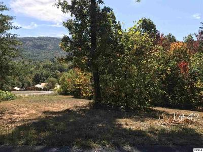 Residential Lots & Land For Sale: Schisandra Lane