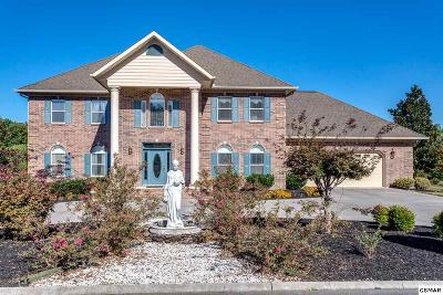 Sevierville Single Family Home For Sale: 340 Riverdale Drive
