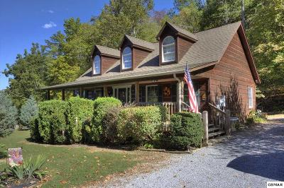 Sevierville Single Family Home For Sale: 3126 Kulpan Way