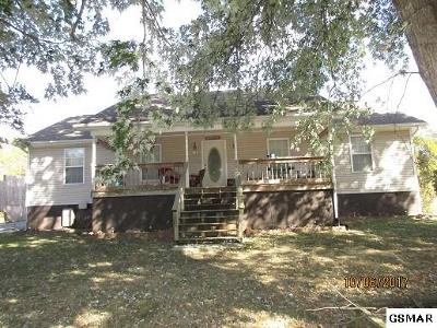 Strawberry Plains Single Family Home For Sale: 902 Apache