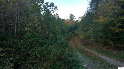 Cosby Residential Lots & Land For Sale: 19.61 Acres Padgett Mill Rd