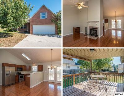 Maryville Single Family Home For Sale: 1412 Liz Vista Court