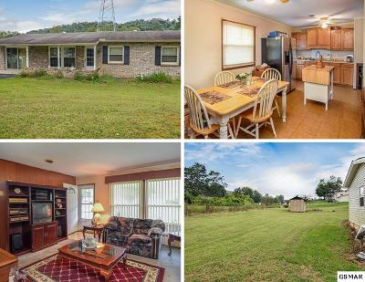 Knoxville Single Family Home For Sale: 4221 Felty Drive