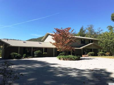 Gatlinburg TN Single Family Home For Sale: $499,900