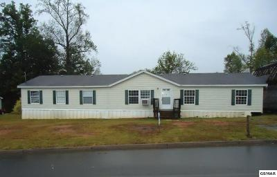 Kodak Single Family Home For Sale: 4339 Diamond Valley Road