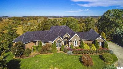 Dandridge Single Family Home For Sale: 533 Lakebend Lane