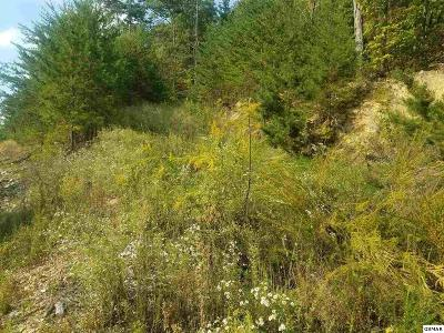 Sevierville Residential Lots & Land For Sale: Lot 180e Jones Creek Lane