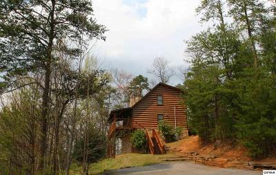 Gatlinburg Single Family Home For Sale: 905 Ski View Ln