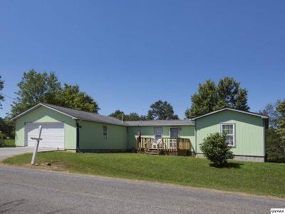 Kodak Single Family Home For Sale: 861 Holbert Lane