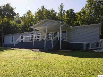Dandridge Single Family Home For Sale: 3680 Collier Loop