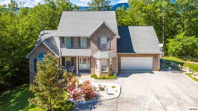 Single Family Home For Sale: 2231 Bluff View Rd
