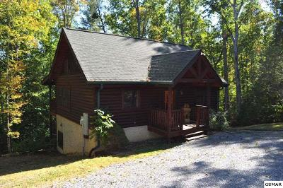 Sevierville Single Family Home For Sale: 2756 Owls Cove Way
