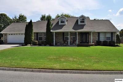 Sevierville Single Family Home For Sale: 1202 Luke Lea