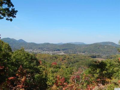 Sevierville Residential Lots & Land For Sale: Lot 3 Lexy Lane