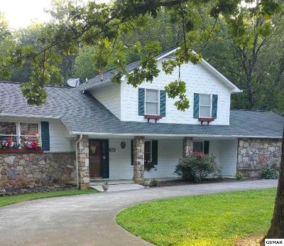 Sevierville Single Family Home For Sale: 328 Birchwood Lane