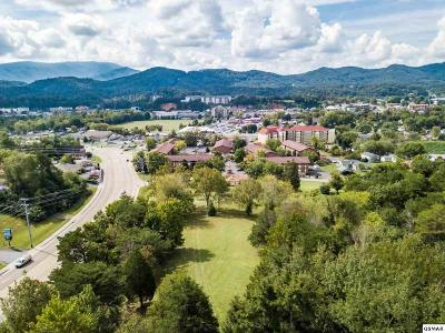 Pigeon Forge Commercial For Sale: Lot 2 Veterans Blvd
