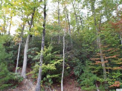 Sevierville Residential Lots & Land For Sale: Lot 181e Jones Creek Lane