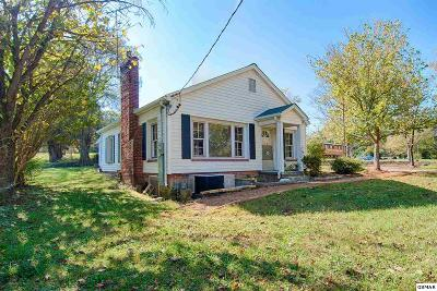 Knoxville Single Family Home For Sale: 1314 E Hendron Chapel Rd