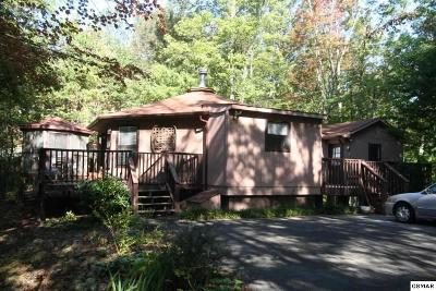 Gatlinburg Single Family Home For Sale: 1071 E Foothills Dr