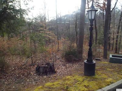 Sevierville Residential Lots & Land For Sale: Lot 137 Wild Heron Way