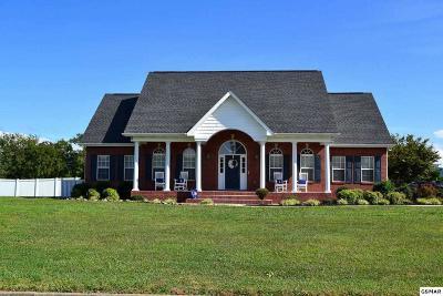 Seymour Single Family Home For Sale: 433 Jack Sharp Dr