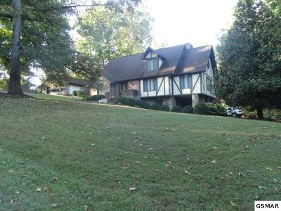 Sevierville Single Family Home For Sale: 1056 Topside Dr