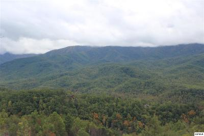 Gatlinburg Residential Lots & Land For Sale: 835 Deer Path Ln