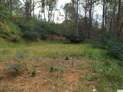 Gatlinburg Residential Lots & Land For Sale: 523 Ridge Rd