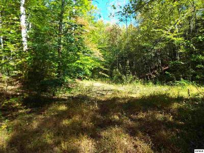 Cosby Residential Lots & Land For Sale: Parcel 086 Otto Williams Road