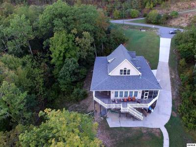 Sevierville Single Family Home For Sale: 3927 Island View Way